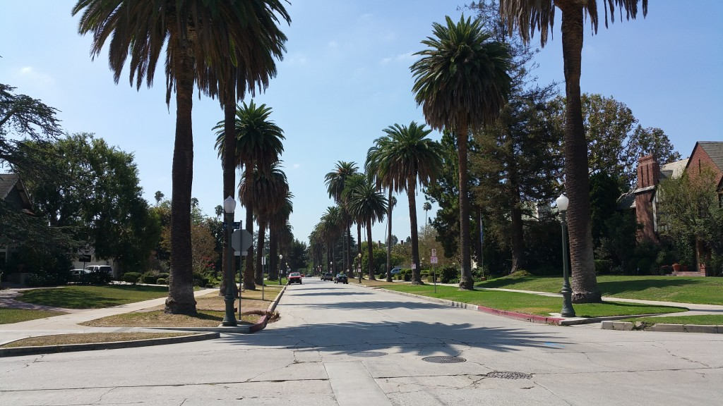 Now doesn't this look exactly how you'd expect a street in Beverly Hills to look?